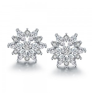 Briley Platinum Plated Earrings